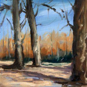 Arboles y bosque.